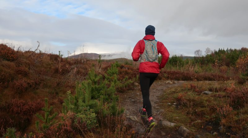 Out of Puffer on magical woodland run